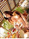 Porno Star Candice Diaz Free Nude Picture