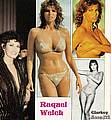 Raquel Welch Free Nude Picture